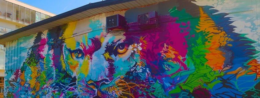 Ma balade street art en 10 photos à Grenoble.