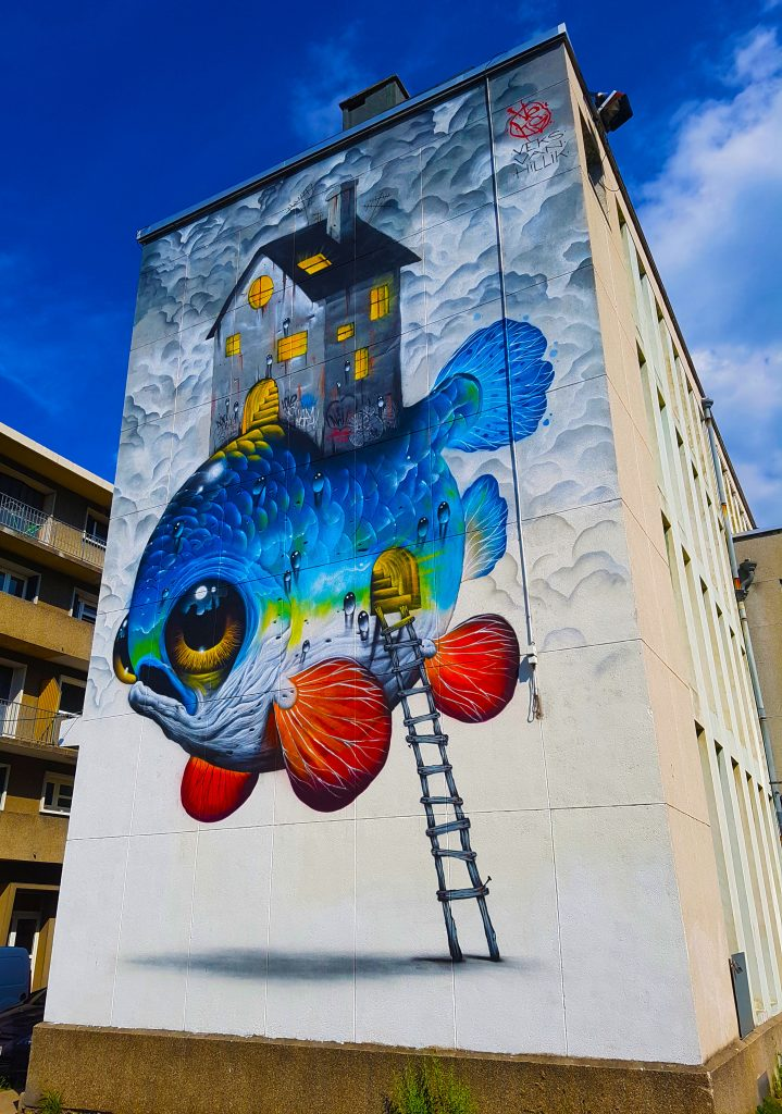 le street art de Veks Van Hillik à Grenoble.