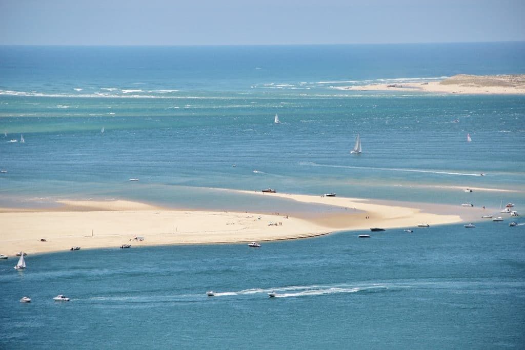 Le banc Arguin, Bassin d'Arcachon. Interview de My Little Road