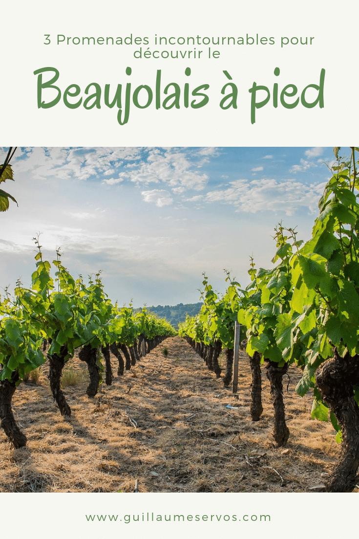 Découvre la région du Beaujolais au nord de Lyon, rendue célèbre par ses vins avec ma sélection des plus belles balades. Au menu : le Mont-Brouilly, les Pierres dorées et Grandris.