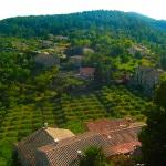 Découvre la région des Vans en Ardèche du sud avec ma sélection des plus belles balades. Au menu : Bannes, Casteljau et Thines.