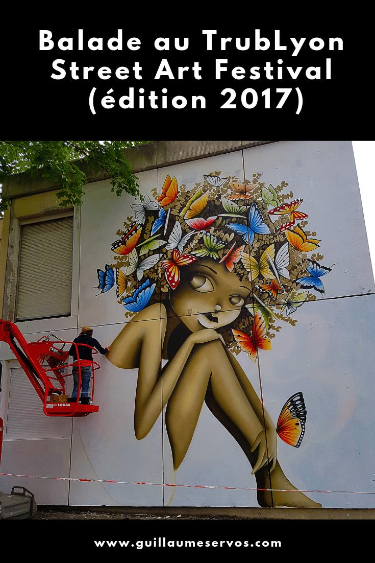 Découvre l'édition 2017 du TrubLyon Street Art Festival à Lyon à la Croix Rousse. Au menu : Vinie, Hopare, PEC, Joyce, Guaché and Co.