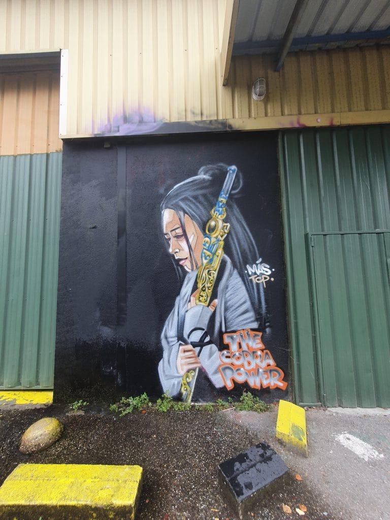 Street art Bordeaux #12 : MAS