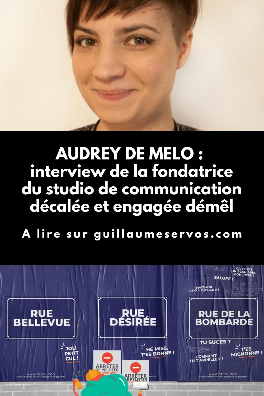 Découvre mon interview avec Audrey de Melo, fondatrice de démêl, un studio de communication décalée et engagée. Freelancing, réseaux sociaux, voyage...