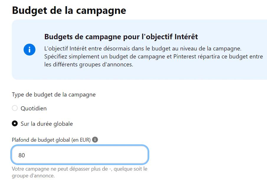 Budget de la campagne Pinterest Ads