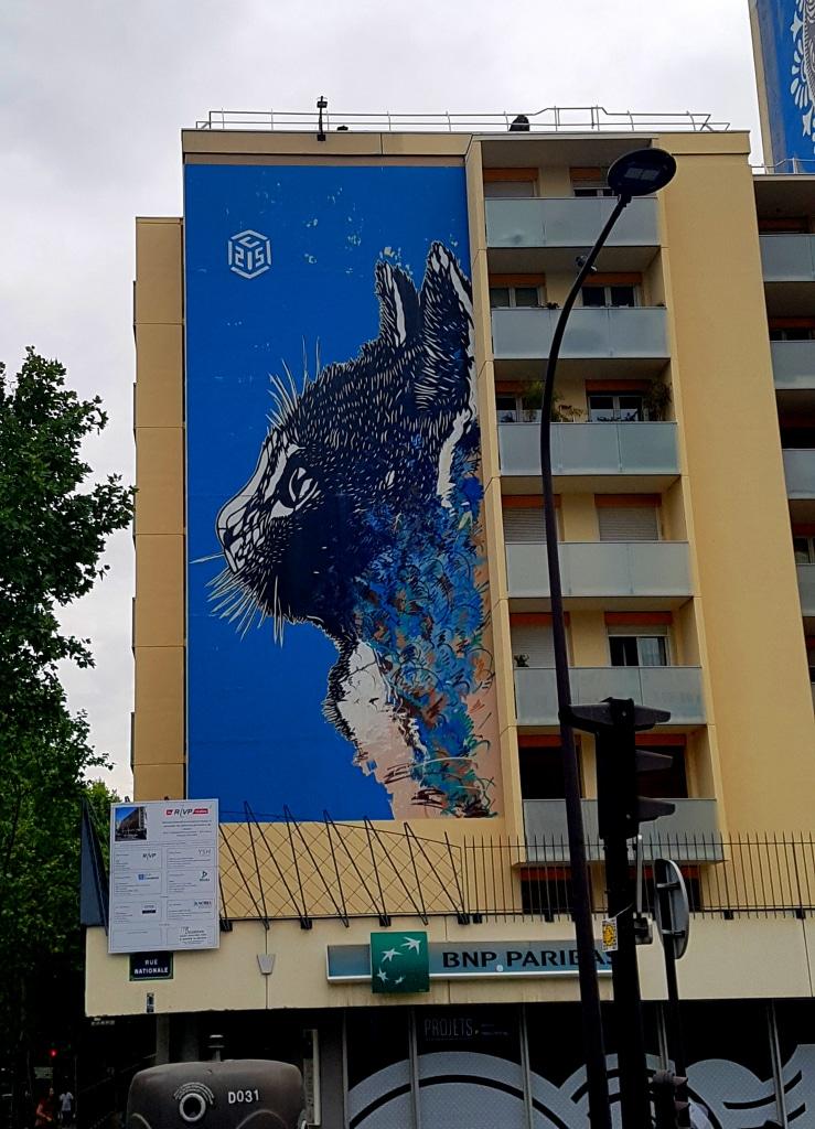 Le chat du street artiste C 215 alias Christian Guémy