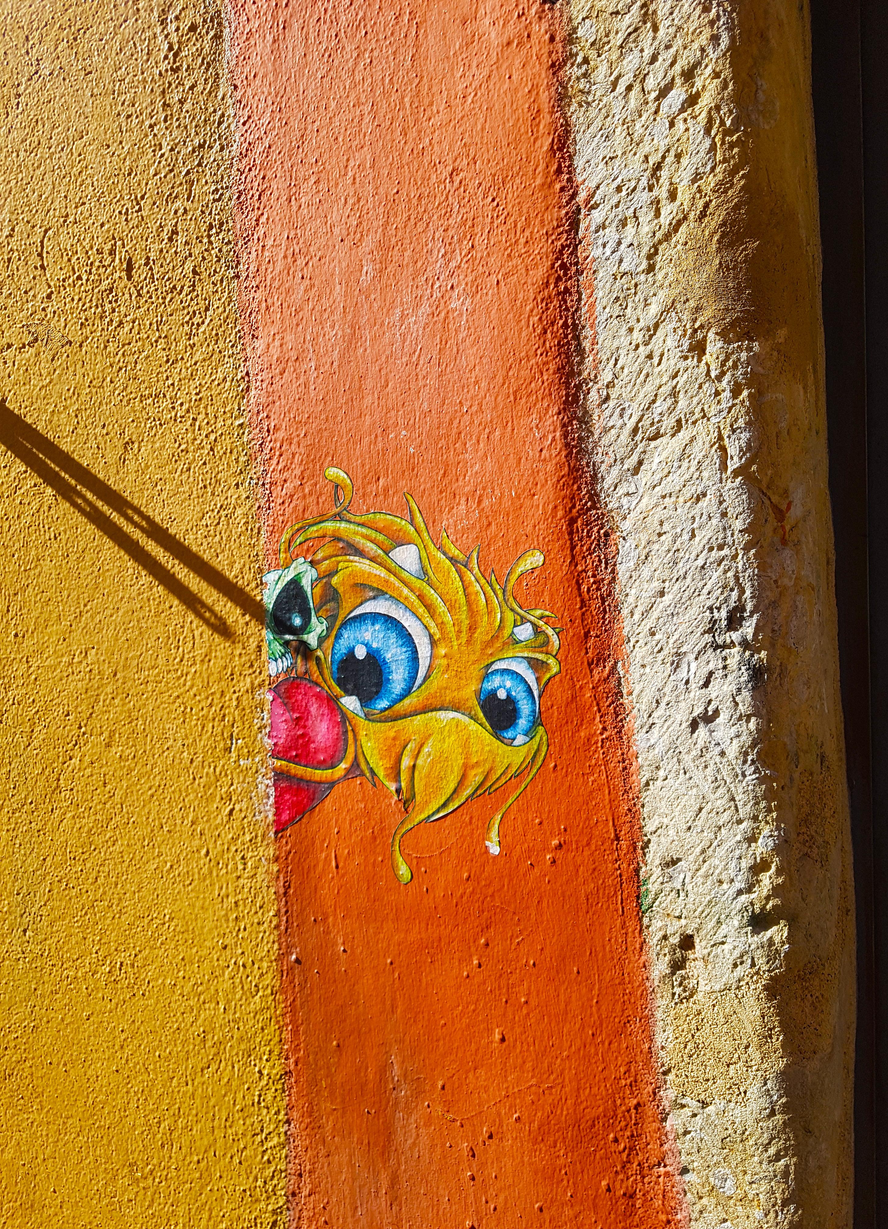 Le street art de Cap Phi sur les pentes de la Croix Rousse à Lyon