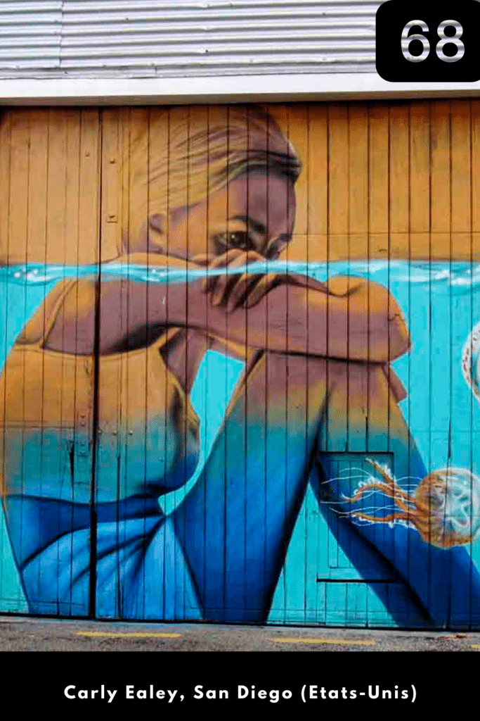 Pour information, Carly Ealey est une  street artiste et photographe autodidacte basée à San Diego (Californie, Etats-Unis).