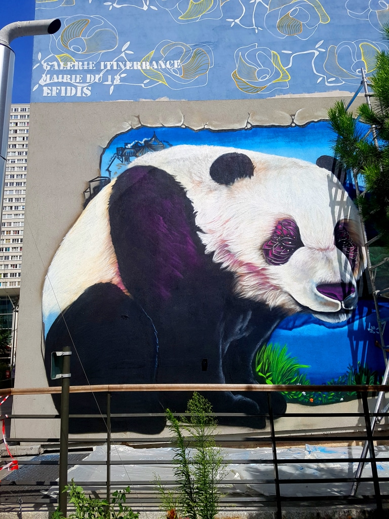 Doudou Style et sa passion pour les pandas et le graffiti