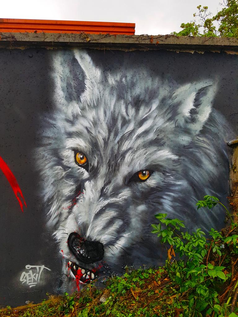 Bourg-en-Bresse et son Bourk en Spray (juin 2019) (street art 2019)