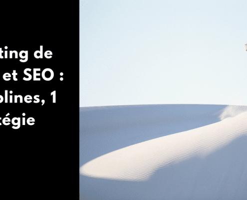 Qu'est-ce que le marketing de contenu ? Les différents types de SEO ? En quoi consiste une stratégie de contenu ? Pourquoi distinguer contenu et SEO ?