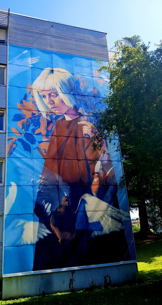 Le street artiste Nean, résidence Ouest Crous, 107 rue des Taillées, bâtiment F, domaine universitaire à Saint-Martin-D'Hères, street art Grenoble