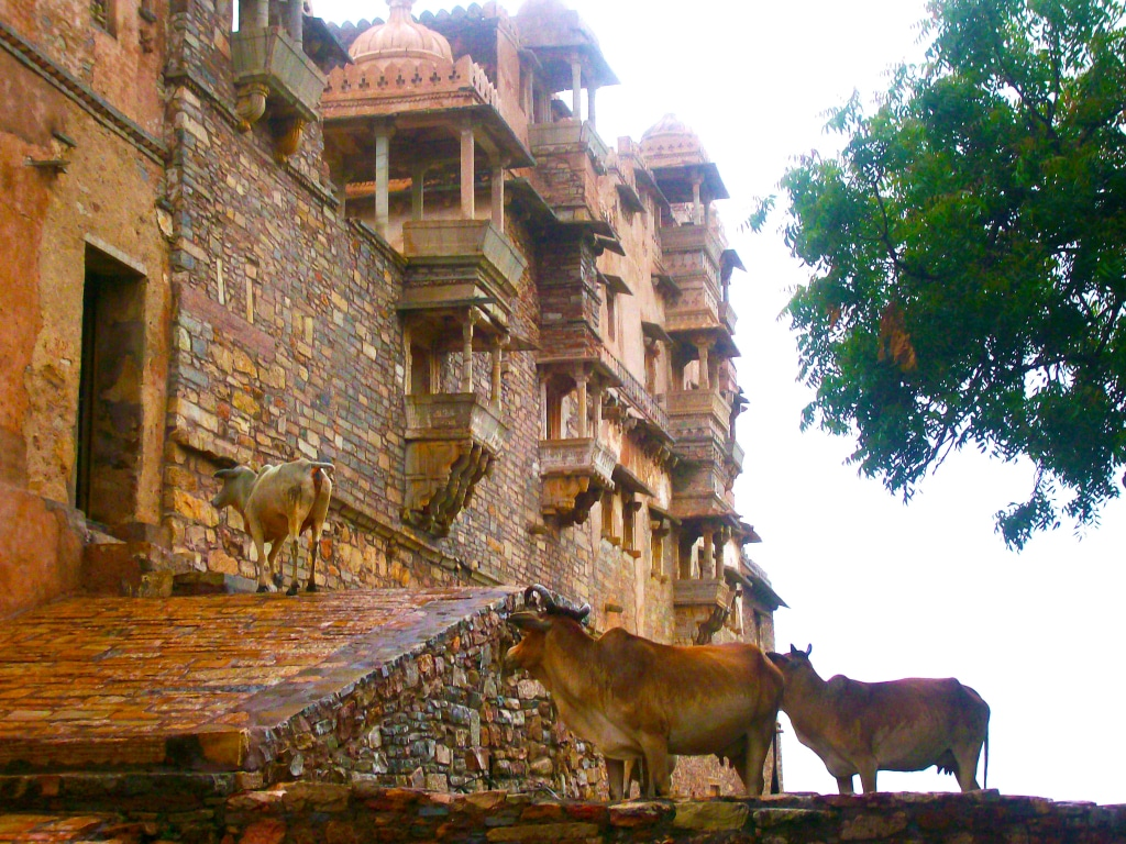Découvre la forteresse de Chittaurgarh dans le Rajasthan dans notre roadtrip en Inde