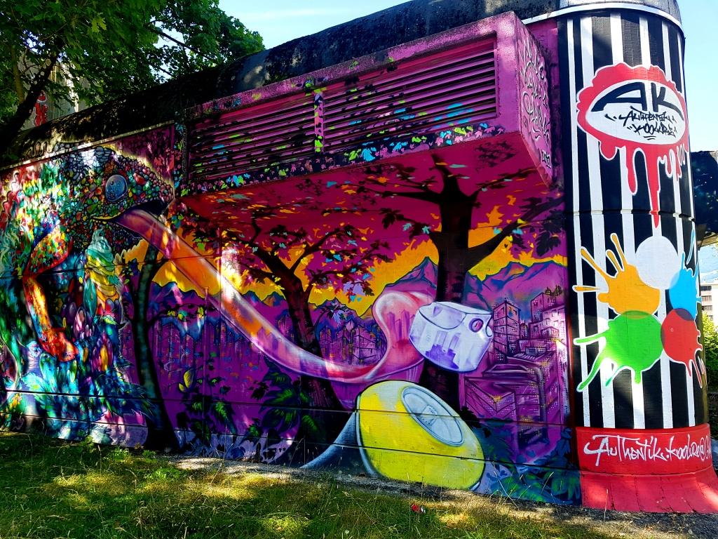 Street art Grenoble à créditer