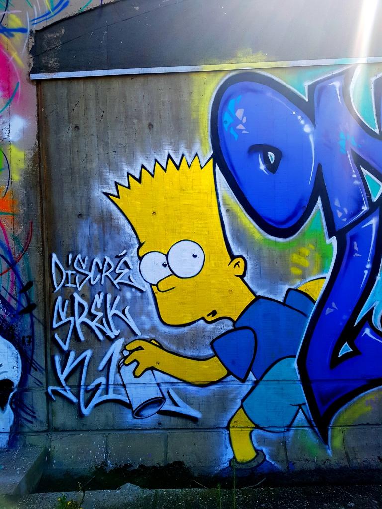 Srek et les Simpson, Grenoble.