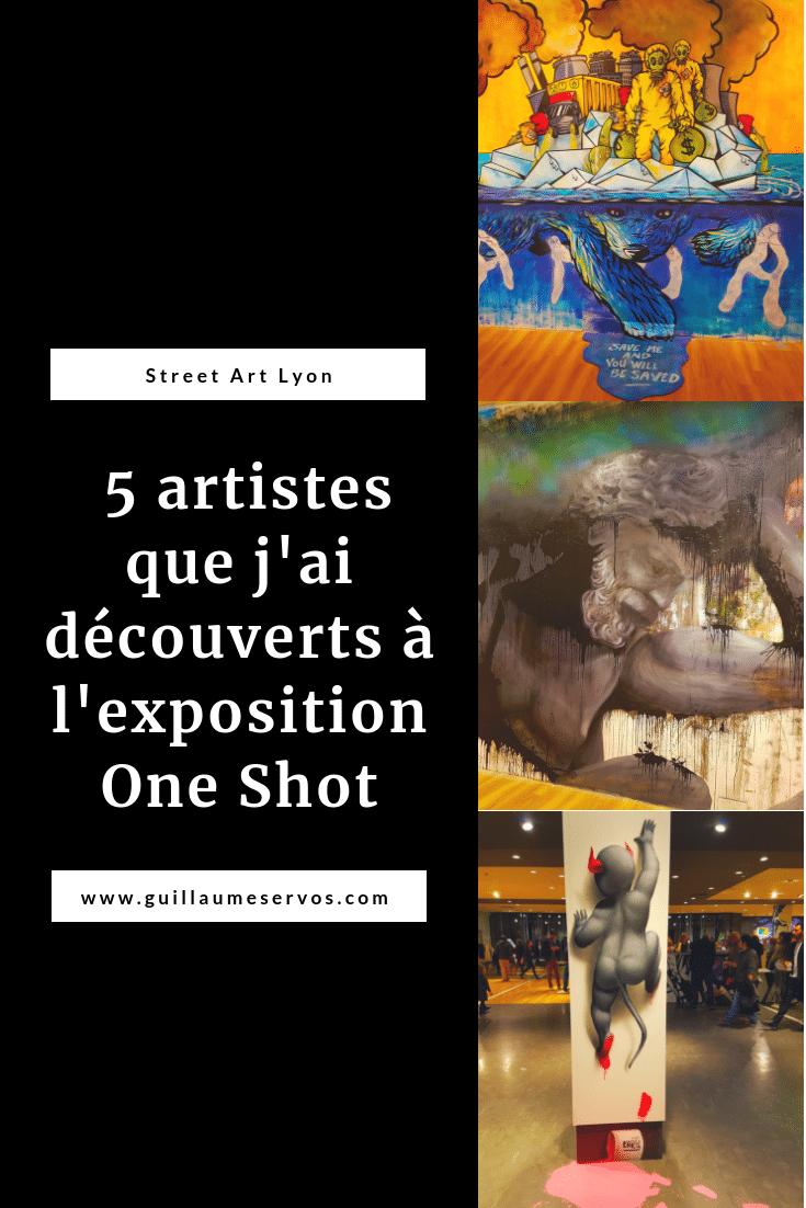 Découvre 5 street artistes que j'ai découverts lors de l'exposition street art One Shot au Centre Commercial Confluence à Lyon. Au menu : Bambi, Alex Peretta, BUR, Don Mateo et Parvati