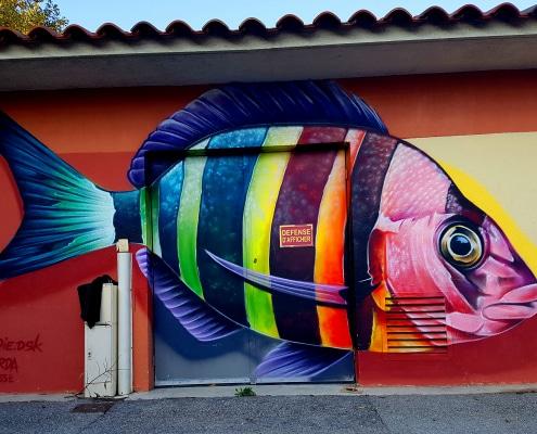 Découvre ma balade street art à Toulon et à La Seyne-sur-Mer dans le Var avec son itinéraire détaillé. Au menu : Hopare, Dopie, Sufyr, Kowse, Supo Caos...