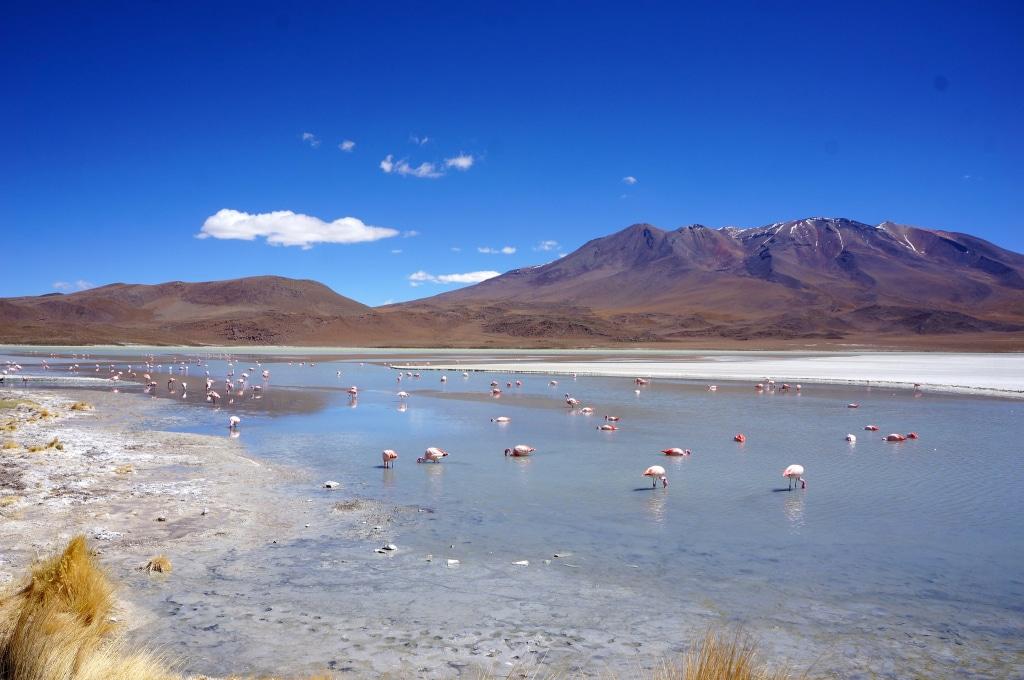 Le Salar d'Uyuni en Bolivie, blog voyage Novo-Monde
