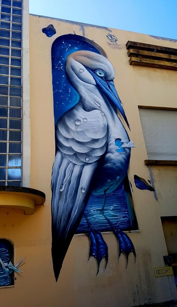 Veks Van Hillik, 90 rue Stalingrad, Grenoble.