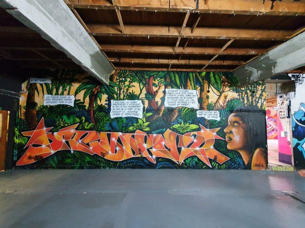 Graffiti au Zoo Art Show XXL, Lyon (France)